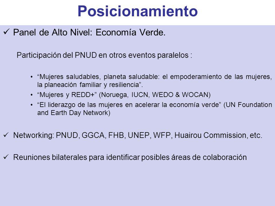 Panel de Alto Nivel: Economía Verde. Participación del PNUD en otros eventos paralelos : Mujeres saludables, planeta saludable: el empoderamiento de l