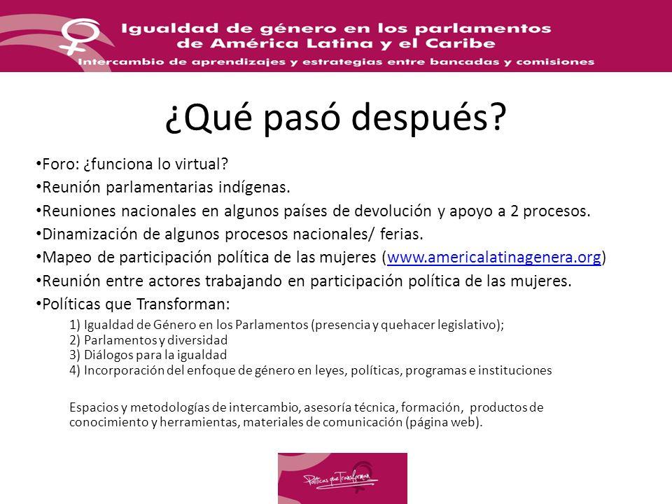 ¿Qué pasó después. Foro: ¿funciona lo virtual. Reunión parlamentarias indígenas.