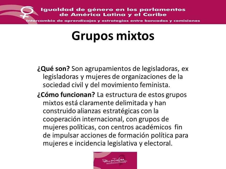 Grupos mixtos ¿Qué son? Son agrupamientos de legisladoras, ex legisladoras y mujeres de organizaciones de la sociedad civil y del movimiento feminista