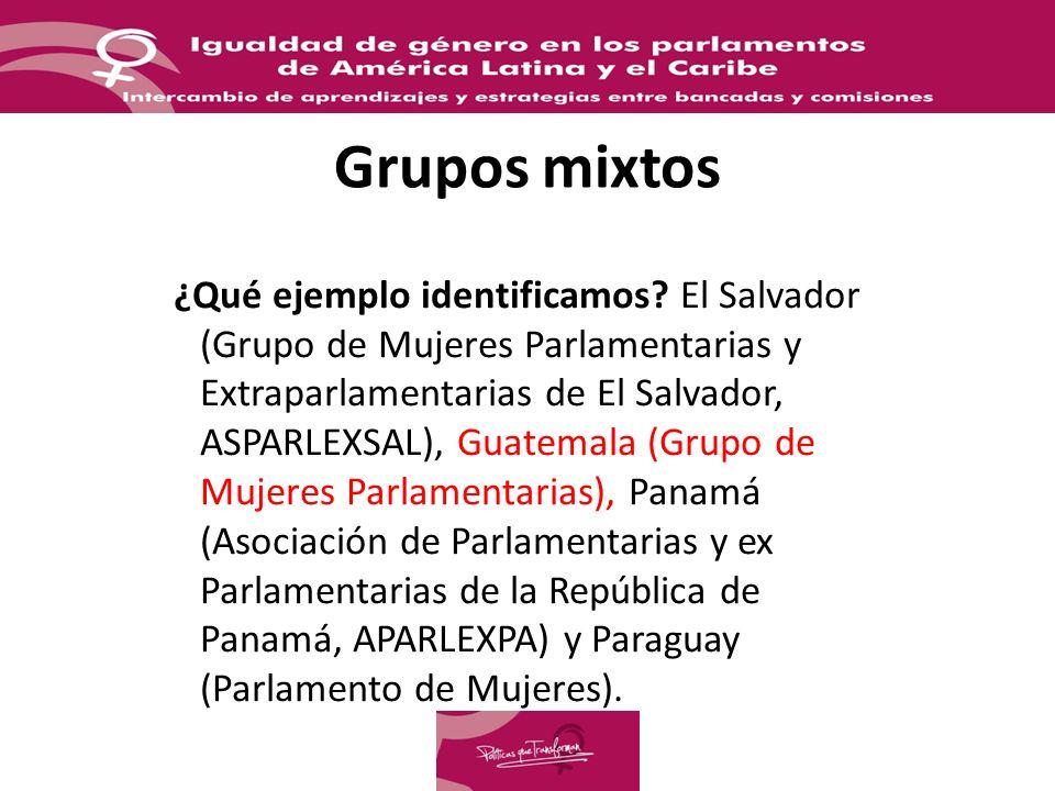 Grupos mixtos ¿Qué ejemplo identificamos? El Salvador (Grupo de Mujeres Parlamentarias y Extraparlamentarias de El Salvador, ASPARLEXSAL), Guatemala (