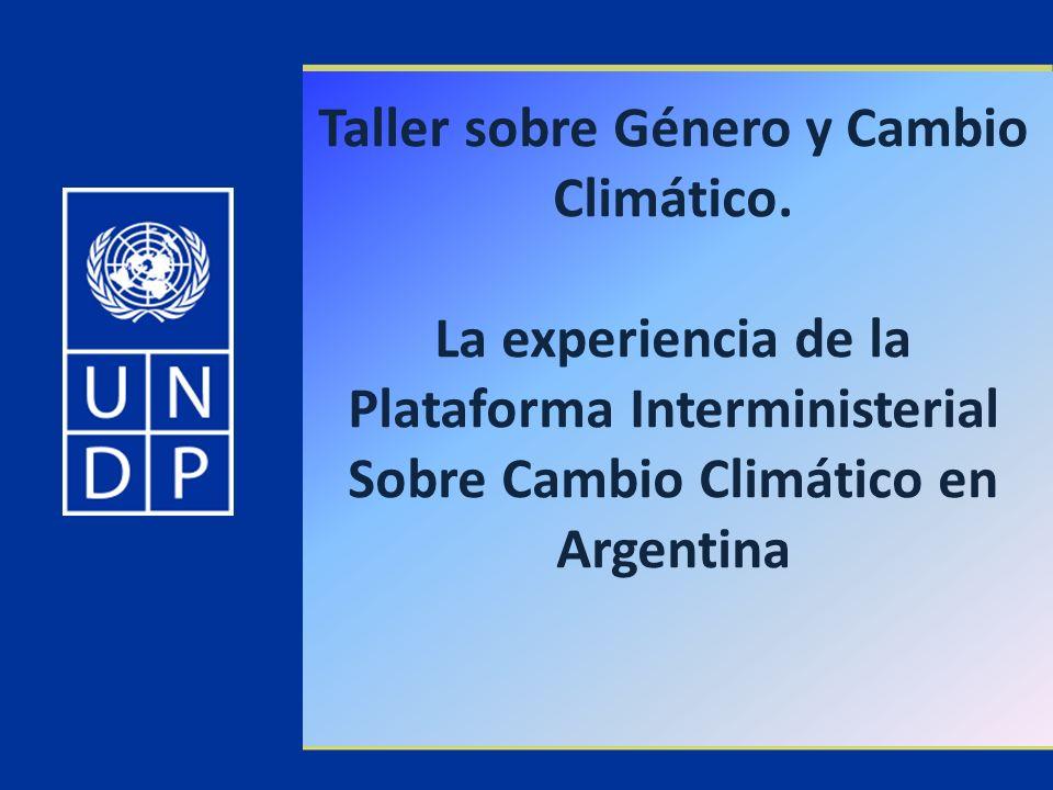 Taller sobre Género y Cambio Climático. La experiencia de la Plataforma Interministerial Sobre Cambio Climático en Argentina
