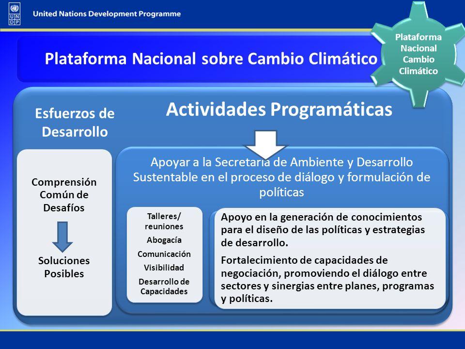 Actividades Programáticas Comprensión Común de Desafíos Soluciones Posibles Apoyar a la Secretaría de Ambiente y Desarrollo Sustentable en el proceso