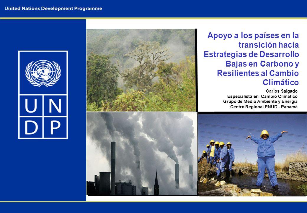 Apoyo a los países en la transición hacia Estrategias de Desarrollo Bajas en Carbono y Resilientes al Cambio Climático Carlos Salgado Especialista en Cambio Climatico Grupo de Medio Ambiente y Energía Centro Regional PNUD - Panamá