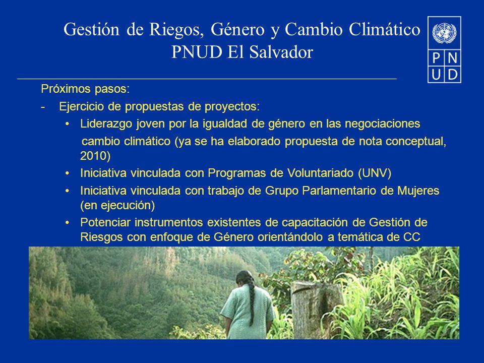 Gestión de Riegos, Género y Cambio Climático PNUD El Salvador Próximos pasos: -Ejercicio de propuestas de proyectos: Liderazgo joven por la igualdad de género en las negociaciones cambio climático (ya se ha elaborado propuesta de nota conceptual, 2010) Iniciativa vinculada con Programas de Voluntariado (UNV) Iniciativa vinculada con trabajo de Grupo Parlamentario de Mujeres (en ejecución) Potenciar instrumentos existentes de capacitación de Gestión de Riesgos con enfoque de Género orientándolo a temática de CC