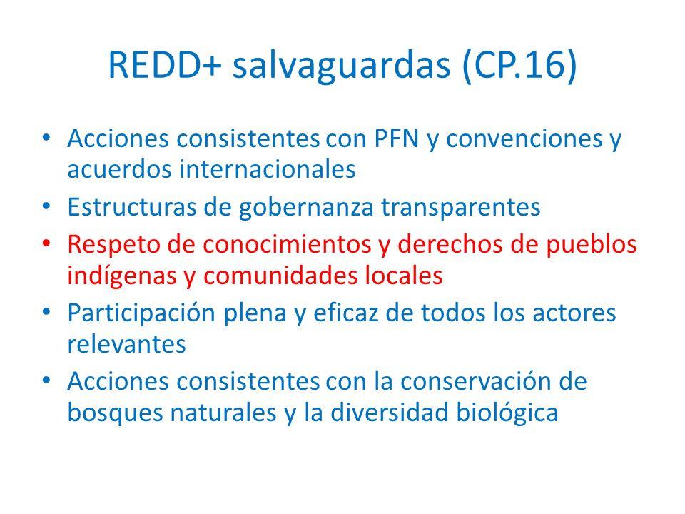 REDD+ salvaguardas (CP.16) Acciones consistentes con PFN y convenciones y acuerdos internacionales Estructuras de gobernanza transparentes Respeto de