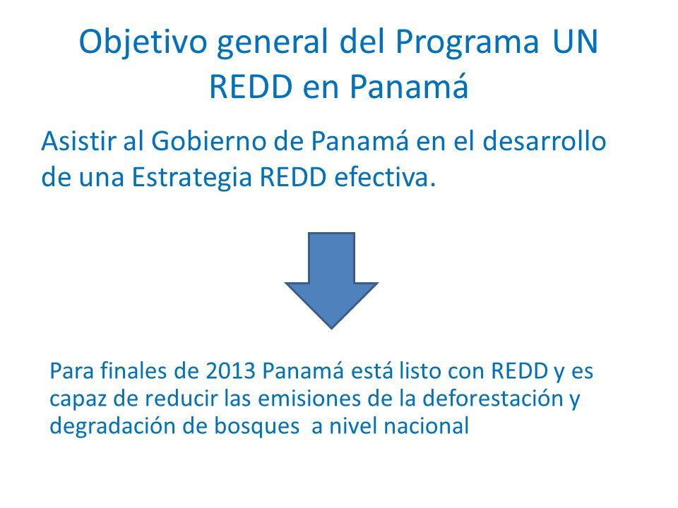 Objetivo general del Programa UN REDD en Panamá Asistir al Gobierno de Panamá en el desarrollo de una Estrategia REDD efectiva. Para finales de 2013 P