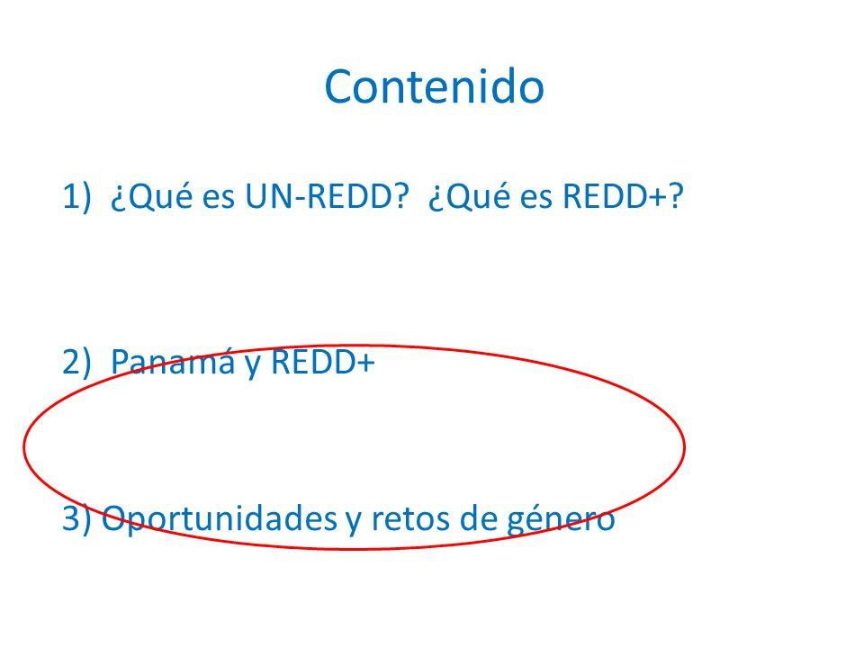 1)¿Qué es UN-REDD? ¿Qué es REDD+? 2)Panamá y REDD+ 3) Oportunidades y retos de género Contenido