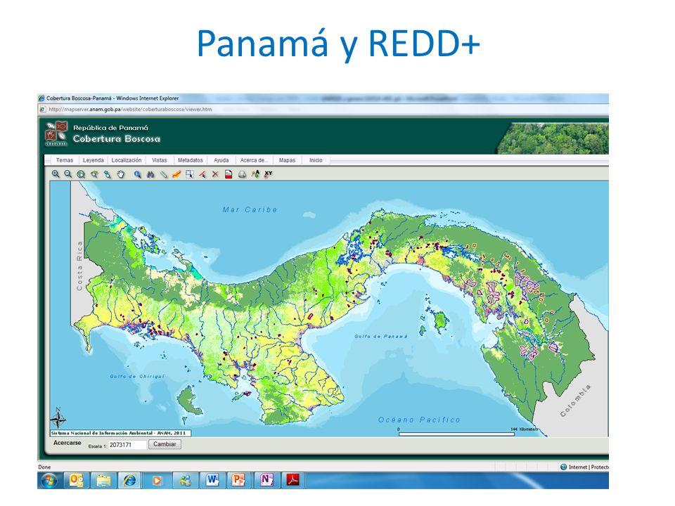 Panamá y REDD+