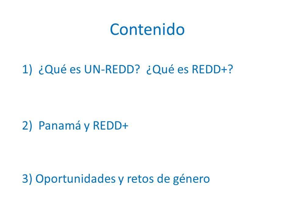 1)¿Qué es UN-REDD ¿Qué es REDD+ 2)Panamá y REDD+ 3) Oportunidades y retos de género Contenido