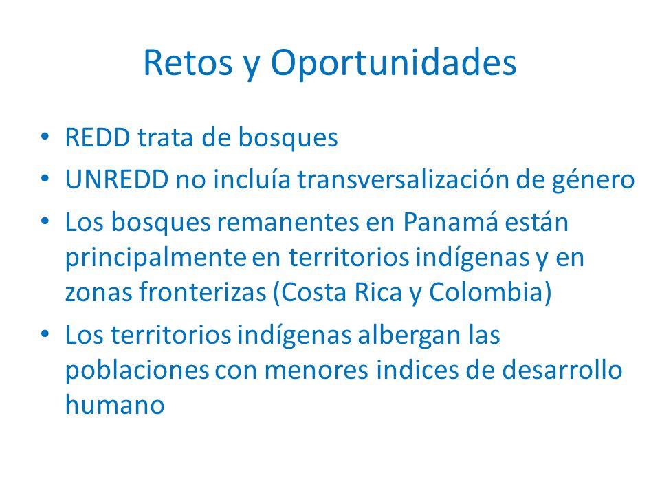 REDD trata de bosques UNREDD no incluía transversalización de género Los bosques remanentes en Panamá están principalmente en territorios indígenas y en zonas fronterizas (Costa Rica y Colombia) Los territorios indígenas albergan las poblaciones con menores indices de desarrollo humano Retos y Oportunidades