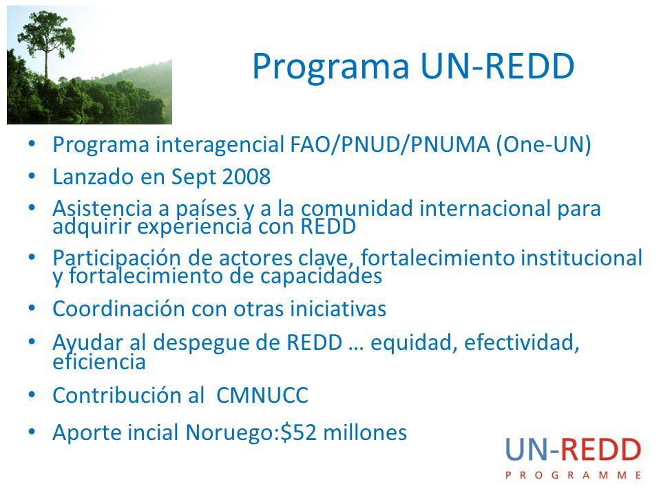 Programa UN-REDD Programa interagencial FAO/PNUD/PNUMA (One-UN) Lanzado en Sept 2008 Asistencia a países y a la comunidad internacional para adquirir experiencia con REDD Participación de actores clave, fortalecimiento institucional y fortalecimiento de capacidades Coordinación con otras iniciativas Ayudar al despegue de REDD … equidad, efectividad, eficiencia Contribución al CMNUCC Aporte incial Noruego:$52 millones