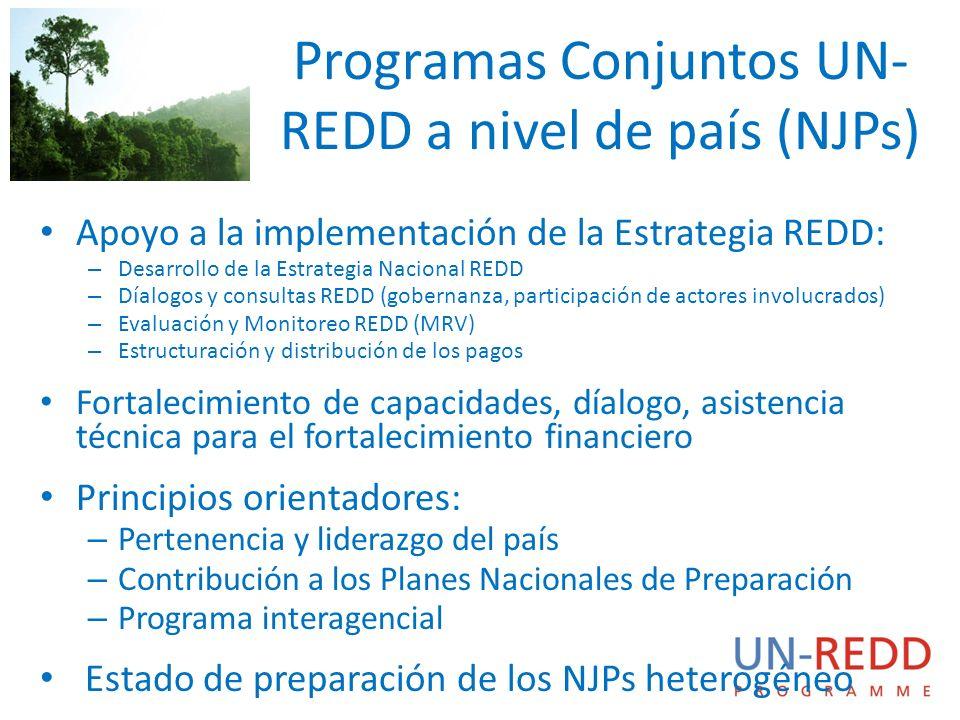 Programas Conjuntos UN- REDD a nivel de país (NJPs) Apoyo a la implementación de la Estrategia REDD: – Desarrollo de la Estrategia Nacional REDD – Día