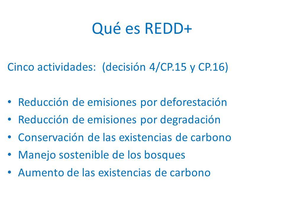 Cinco actividades: (decisión 4/CP.15 y CP.16) Reducción de emisiones por deforestación Reducción de emisiones por degradación Conservación de las existencias de carbono Manejo sostenible de los bosques Aumento de las existencias de carbono Qué es REDD+