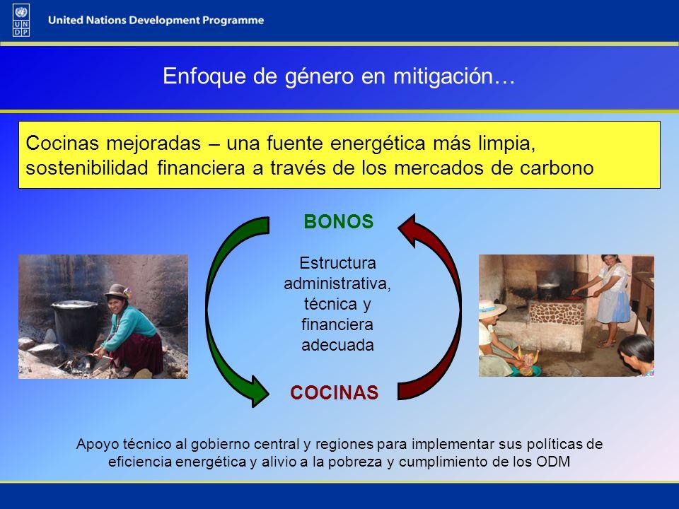 Cocinas mejoradas – una fuente energética más limpia, sostenibilidad financiera a través de los mercados de carbono Enfoque de género en mitigación… B