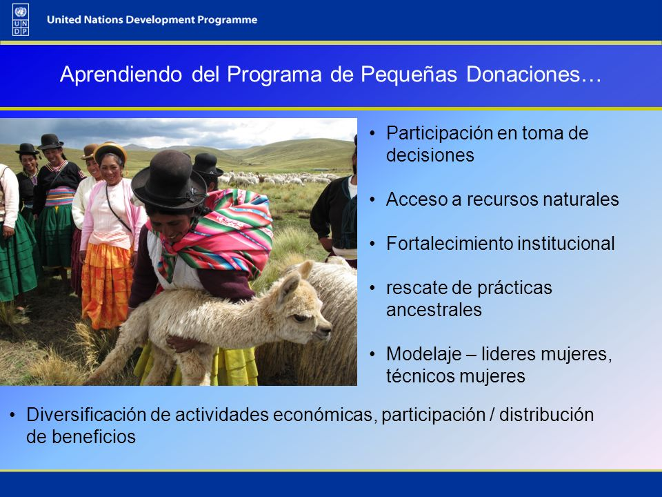 Aprendiendo del Programa de Pequeñas Donaciones… Participación en toma de decisiones Acceso a recursos naturales Fortalecimiento institucional rescate