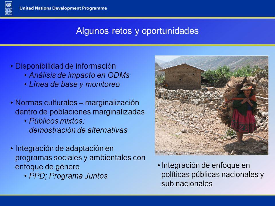 Algunos retos y oportunidades Disponibilidad de información Análisis de impacto en ODMs Línea de base y monitoreo Normas culturales – marginalización
