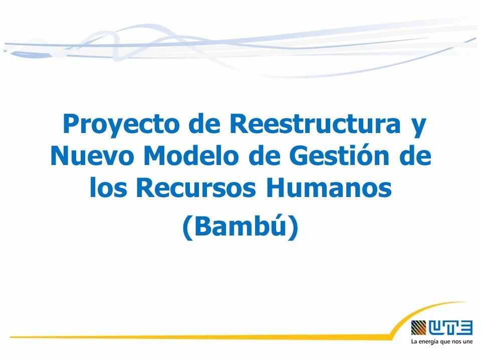 Proyecto de Reestructura y Nuevo Modelo de Gestión de los Recursos Humanos (Bambú)