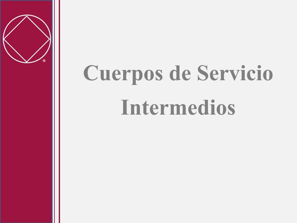 Cuerpos de Servicio Intermedios