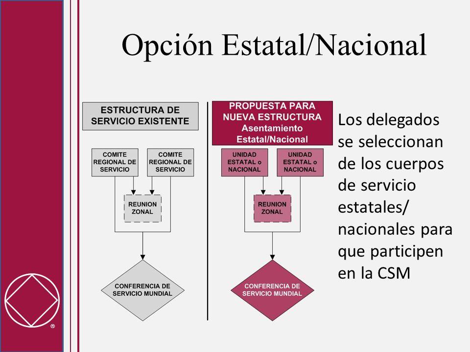 Opción Estatal/Nacional Los delegados se seleccionan de los cuerpos de servicio estatales/ nacionales para que participen en la CSM