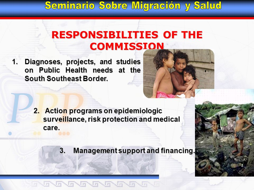 RESPONSIBILITIES OF THE COMMISSION 1.Diagnoses, projects, and studies on Public Health needs at the South Southeast Border.