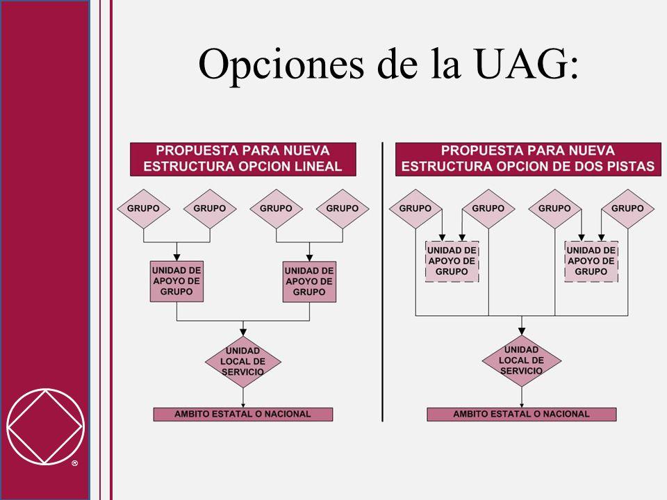 La UAG es parte de la corriente de delegación entre el grupo y el resto de NA Se debe tener cuidado para limitar los asuntos de las UAGs y para preservar el enfoque en los grupos