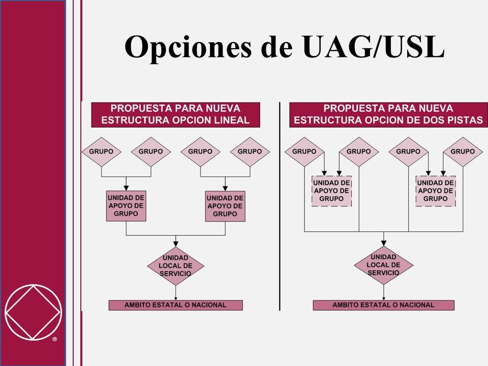 Opciones de UAG/USL