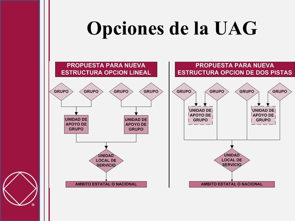 Opciones de la UAG