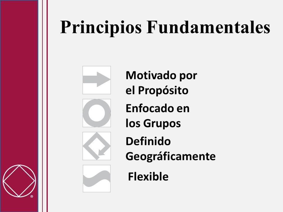 Principios Fundamentales Motivado por el Propósito Flexible Definido Geográficamente Enfocado en los Grupos