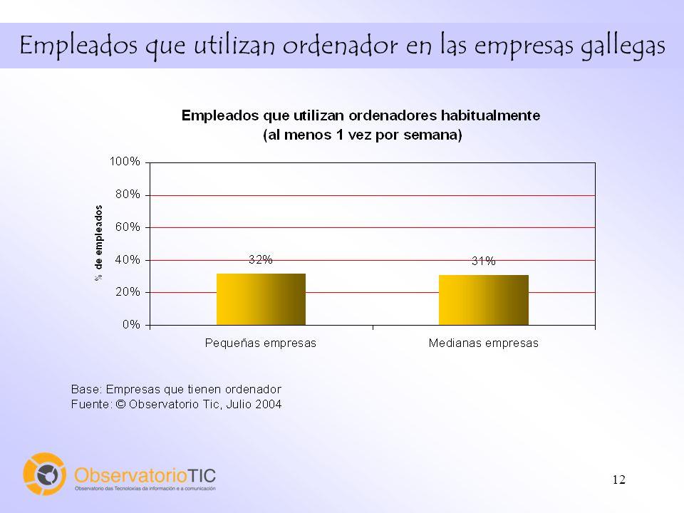 12 Empleados que utilizan ordenador en las empresas gallegas