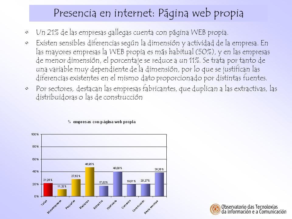 Presencia en internet: Página web propia Un 21% de las empresas gallegas cuenta con página WEB propia. Existen sensibles diferencias según la dimensió
