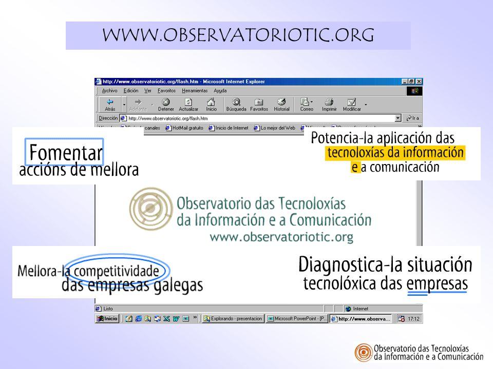 Objetivo del documento Resumir y aportar algunas conclusiones sobre los datos recogidos por el OBSERVATORIO TIC en relación al uso de las TICs en las empresas gallegas.