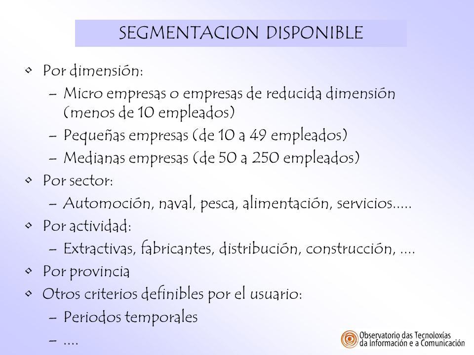SEGMENTACION DISPONIBLE Por dimensión: –Micro empresas o empresas de reducida dimensión (menos de 10 empleados) –Pequeñas empresas (de 10 a 49 emplead