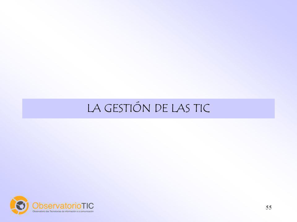 55 LA GESTIÓN DE LAS TIC