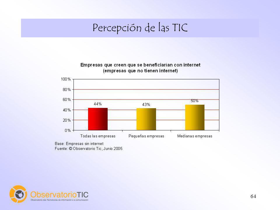 64 Percepción de las TIC