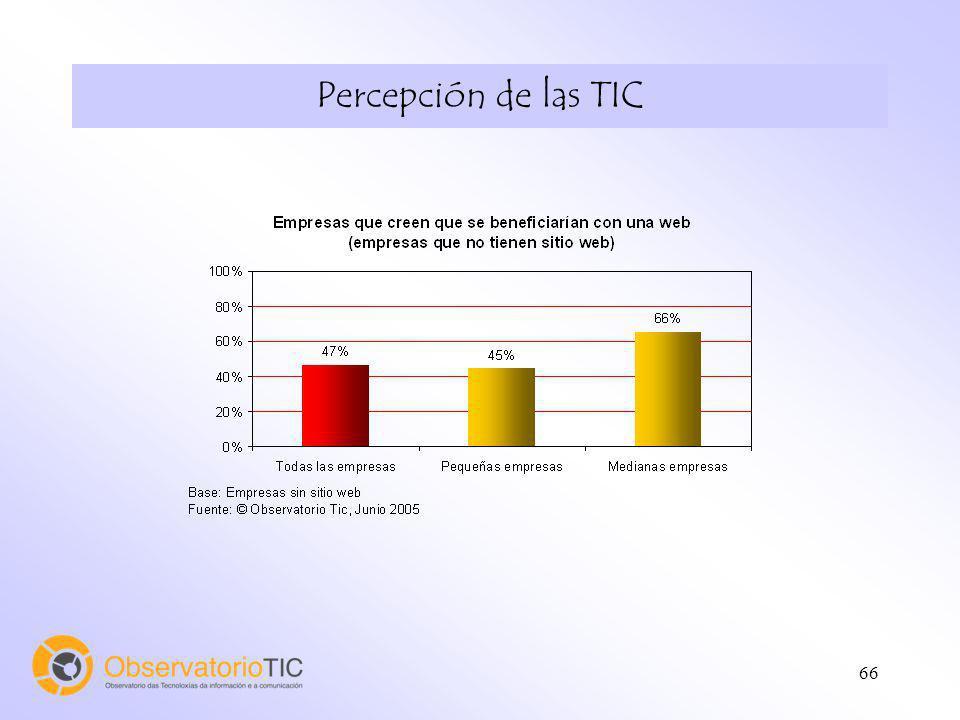 66 Percepción de las TIC