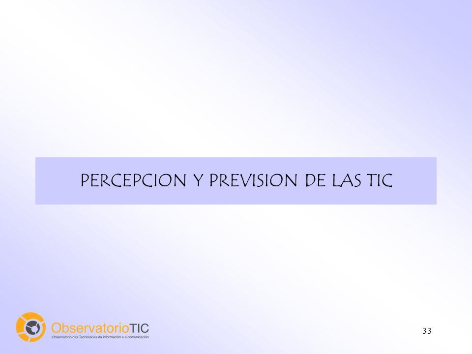 33 PERCEPCION Y PREVISION DE LAS TIC