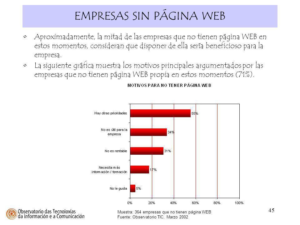 45 EMPRESAS SIN PÁGINA WEB Muestra: 364 empresas que no tienen página WEB Fuente: Observatorio TIC, Marzo 2002 Aproximadamente, la mitad de las empres