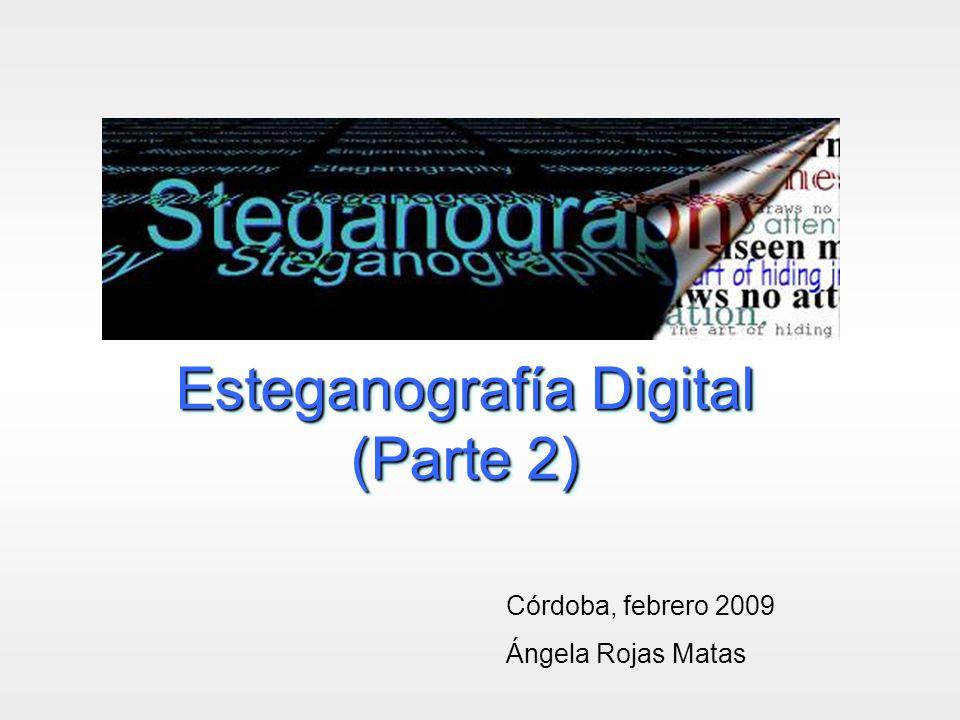 Esteganografía Digital (Parte 2) Córdoba, febrero 2009 Ángela Rojas Matas