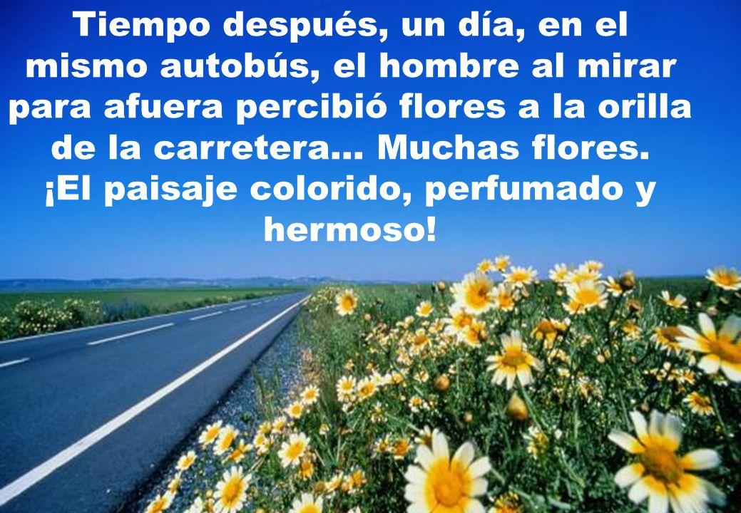 Tiempo después, un día, en el mismo autobús, el hombre al mirar para afuera percibió flores a la orilla de la carretera...