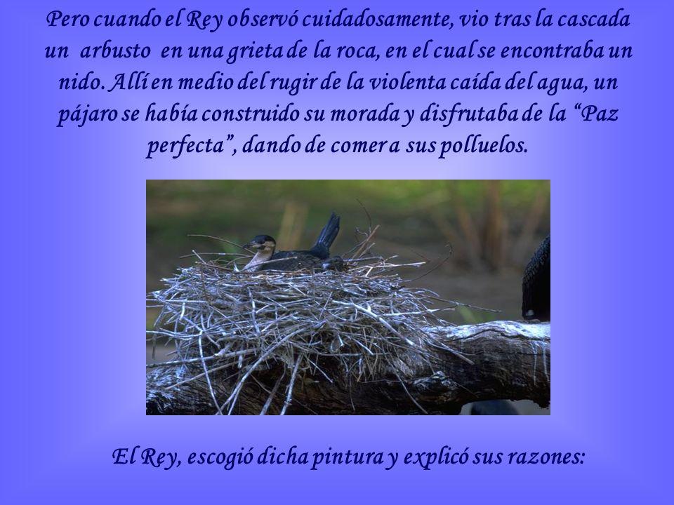 Pero cuando el Rey observó cuidadosamente, vio tras la cascada un arbusto en una grieta de la roca, en el cual se encontraba un nido.