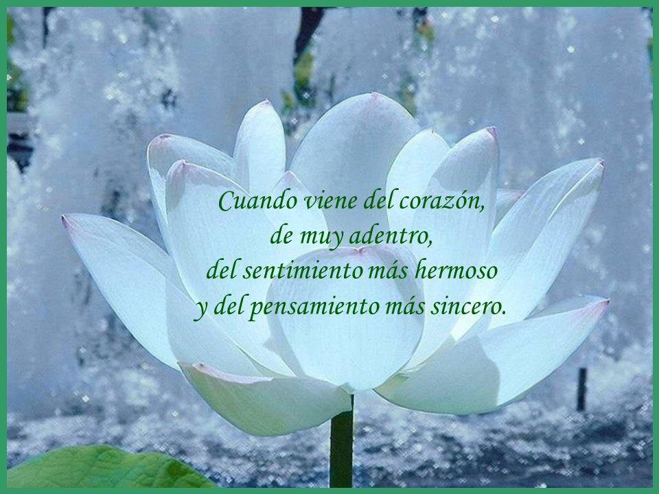 sonialilianafio@yahoo.com.ar GRACIAS curso 11-12...una maravillosa palabra que utilizamos para expresar gratitud especial; pero a veces esa palabra no