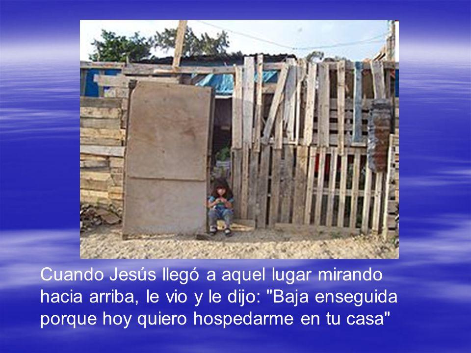 Cuando Jesús llegó a aquel lugar mirando hacia arriba, le vio y le dijo:
