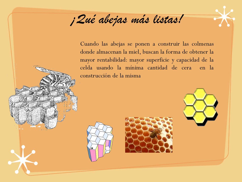 ¡Qué abejas más listas! Cuando las abejas se ponen a construir las colmenas donde almacenan la miel, buscan la forma de obtener la mayor rentabilidad: