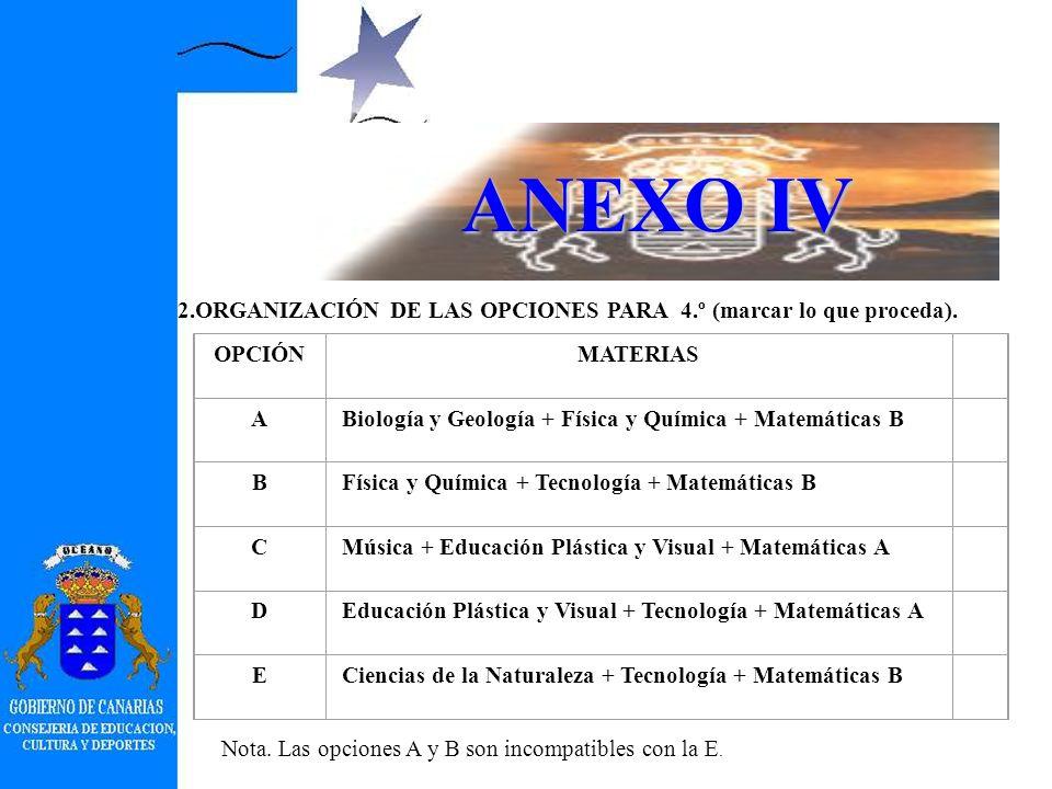 ANEXO IV PLAN DE OFERTA DE ENSEÑANZAS.