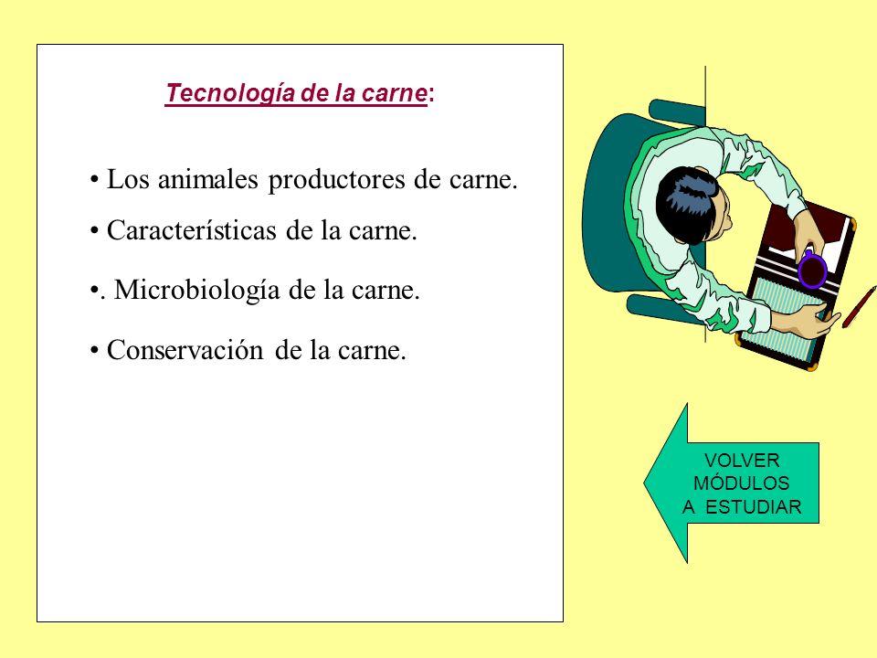 Higieney seguridad alimentaria: Los alimentos. Microbiología de los alimentos. Alteraciones de los alimentos. Normas de higiene alimentaria. Limpieza