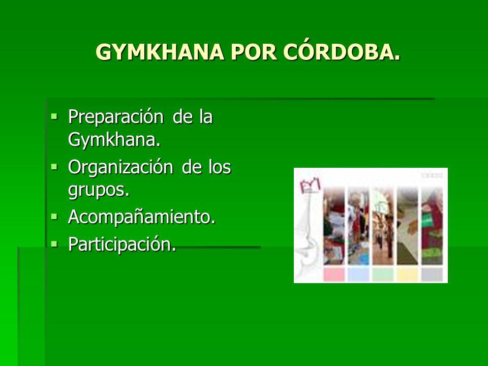 GYMKHANA POR CÓRDOBA. Preparación de la Gymkhana. Preparación de la Gymkhana. Organización de los grupos. Organización de los grupos. Acompañamiento.