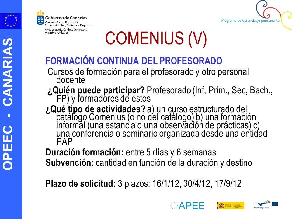 OPEEC - CANARIAS COMENIUS (V) FORMACIÓN CONTINUA DEL PROFESORADO Cursos de formación para el profesorado y otro personal docente ¿Quién puede particip