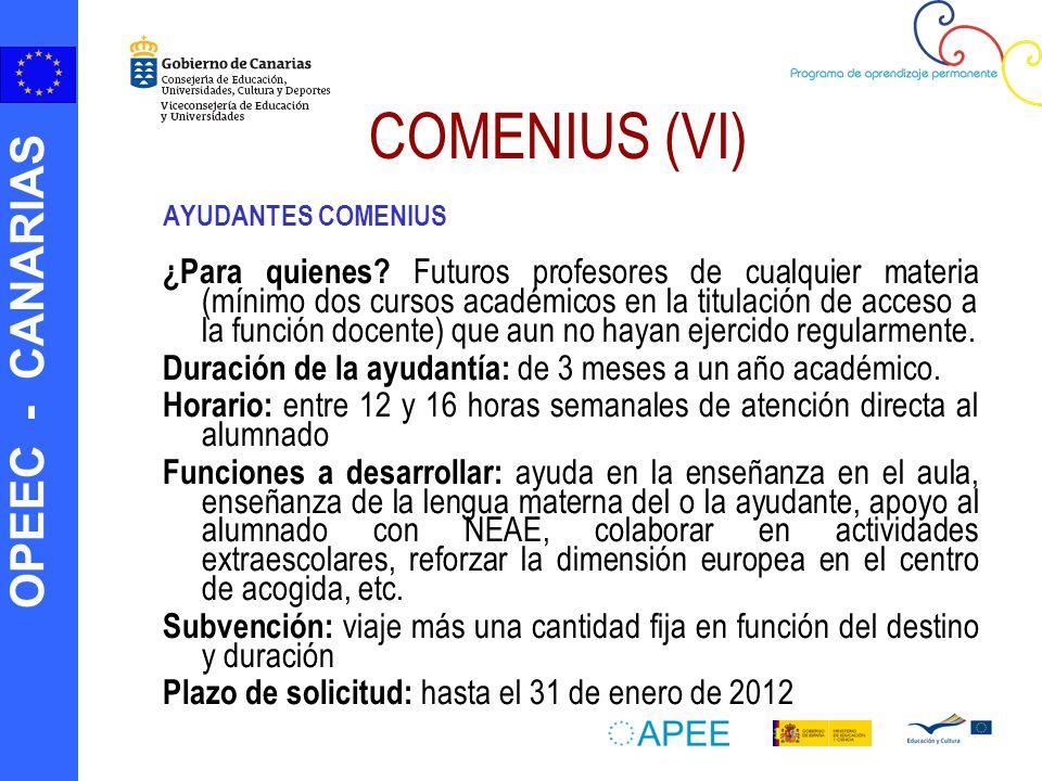 OPEEC - CANARIAS COMENIUS (VI) AYUDANTES COMENIUS ¿Para quienes? Futuros profesores de cualquier materia (mínimo dos cursos académicos en la titulació