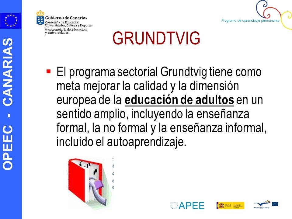 OPEEC - CANARIAS GRUNDTVIG El programa sectorial Grundtvig tiene como meta mejorar la calidad y la dimensión europea de la educación de adultos en un
