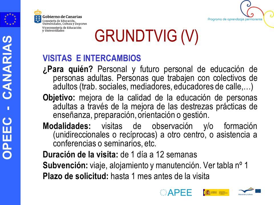 OPEEC - CANARIAS GRUNDTVIG (V) VISITAS E INTERCAMBIOS ¿Para quién? Personal y futuro personal de educación de personas adultas. Personas que trabajen